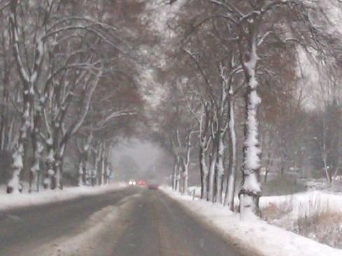 Weiße Weihnachten 2012 ade?