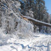 Vom Schneeflöckchen zum Schwergewicht  So schwer ist Schnee