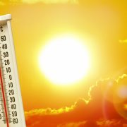 Hitzehöhepunkt rund um den Siebenschläfer-Tag  Bleibt es nun sieben Wochen heiß?