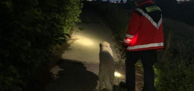 Iserlohner Rettungshunde unterstützen in Breckerfeld
