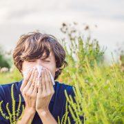 Wann die Pollen fliegen und wie man sich schützen kann